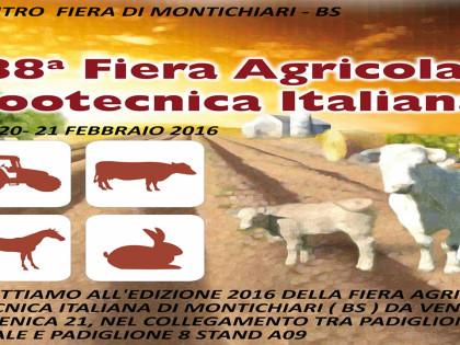 Fiera agricola Zootecnica Italiana Montichiari Brescia